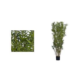 Bambu Oriental de 1,50cm /190/200/240cm