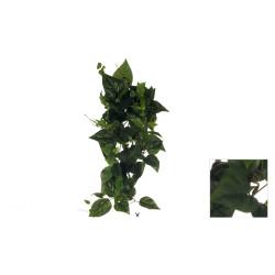 COLGANTE POTHOS/PHILO X155 LARGE 82 CM