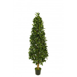 476251 FB PIRAMIDE LAUREL 22R 150CM C/M UV2 (30