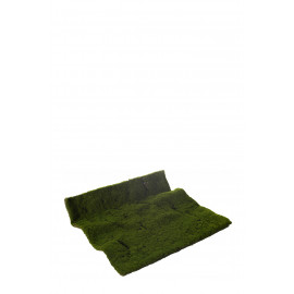 ALFOMBRA MOSS 50 X 50