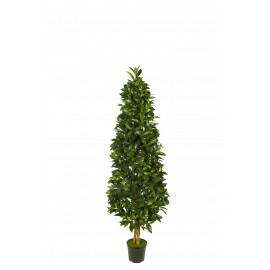 473554 FB ARBOL PIRAMIDE LAUREL 16R 120CM C/MAC