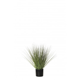 478447 PLANTA GRASS C/MAC 64CM VERDE