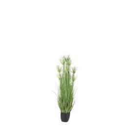 480096 PLANTA GRASS/PAPIRUS 62CM