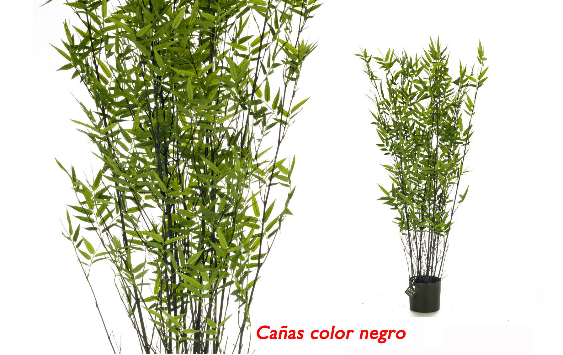 arbol bambu 105cm www.floresymuchomas.com