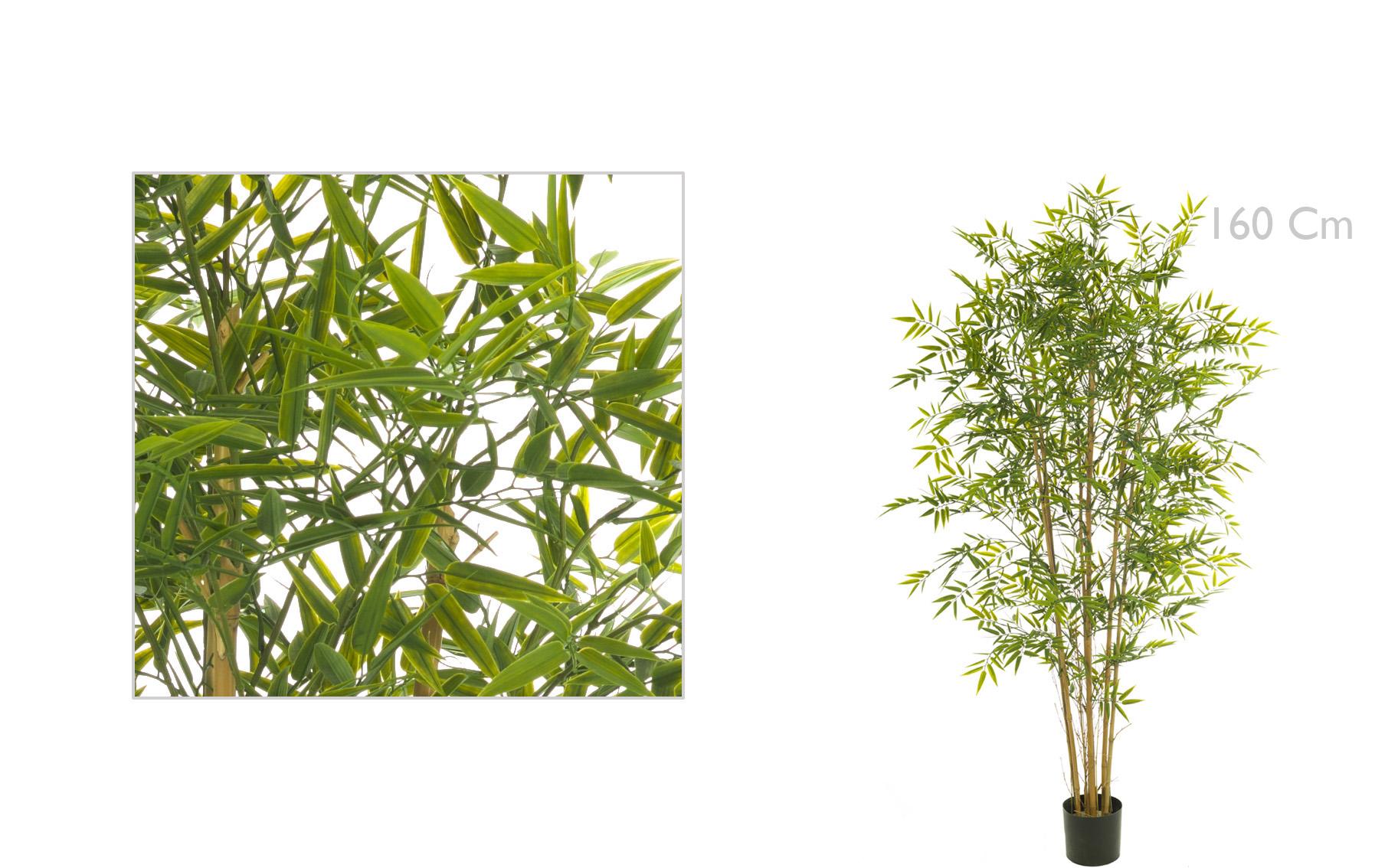 arbool  Bambu de 160cm www.floresymuchomas.com