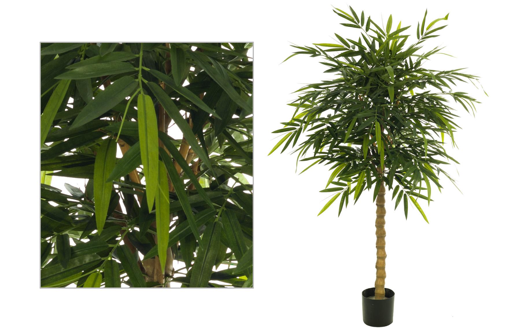 bambu de 130cm www.floresymuchomas.com