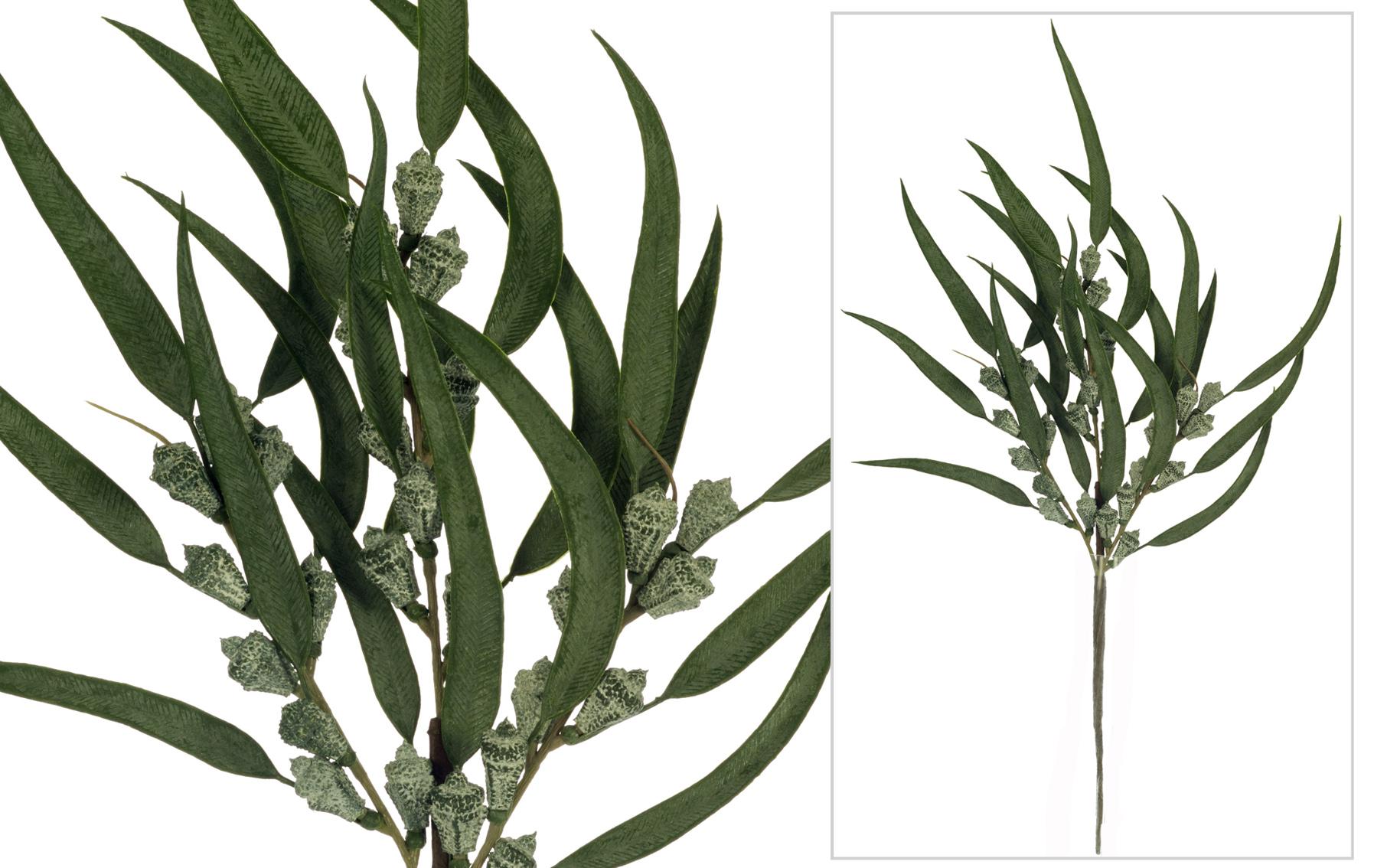 rama de eucalipto navidad www.floresymuchomas.com