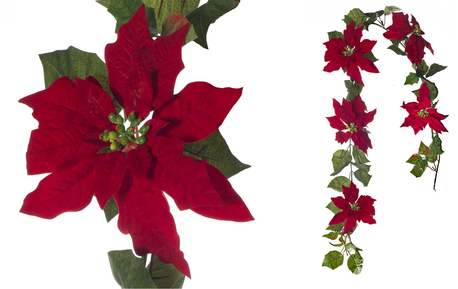 GUIRNALDA PONSETIA NAVIDAD www.floresynavidad.com