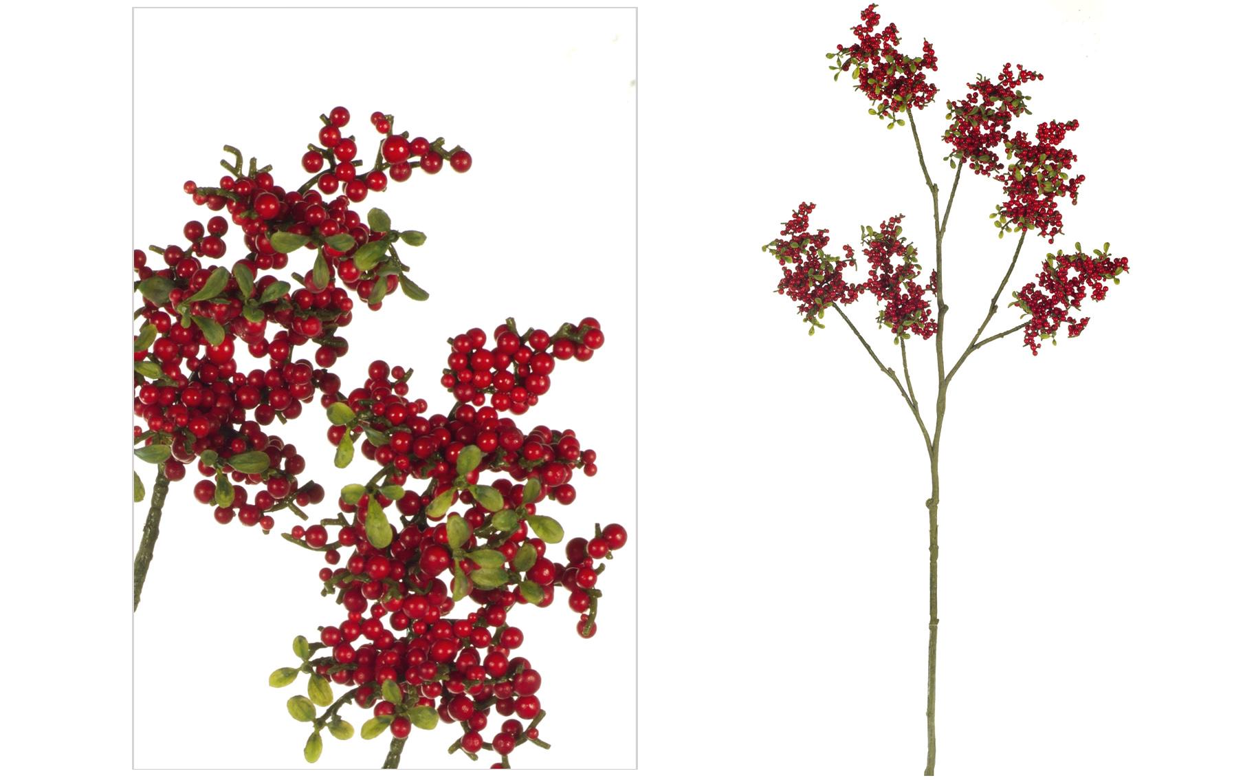 rama miniberry www.floresymuchomas.com